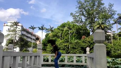 SDC校园街舞冠军赛 校园街舞 陈丽 广西农业职业技术学院 爵士