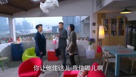 金牌律师:苏东搬来和小九住,孤男寡女共处一室,怪不自在的