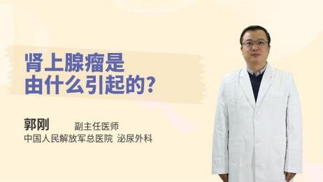 肾上腺瘤是由什么引起的