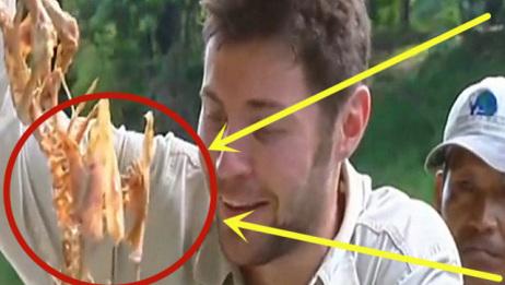 食人鱼有多恐怖?将一只鸭子放进河中,10秒后别眨眼!