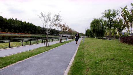 上海虹桥,上海国家会展中心,上海不愧是基建狂魔的城市之一