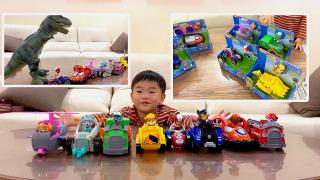 萌宝开箱8台汪汪队玩具车,莱德队长遇到了恐龙,汪汪队速速救援