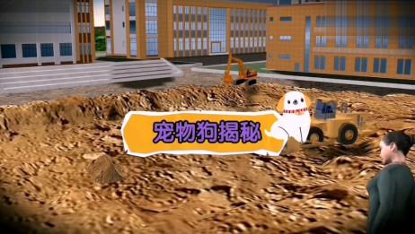 湖南操场埋尸案,中国恐怖恶心案件排行榜第一名