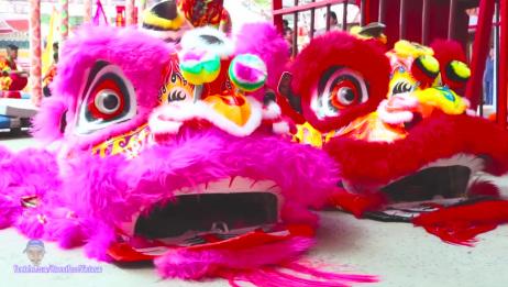 越南舞狮 狮子舞 02 2019