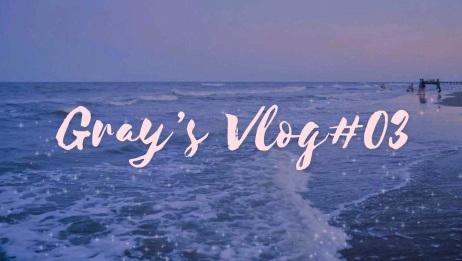 Vlog03 补课的一周and与朋友一起过周末