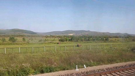 火车从牙克石到海拉尔,窗外就是著名的呼伦贝尔大草原了,太美了
