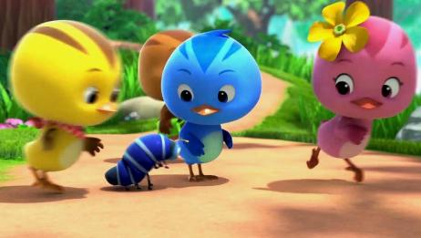 萌鸡小学堂:小萌鸡们这么可爱,怎么会让人害怕?是你胆子太小!