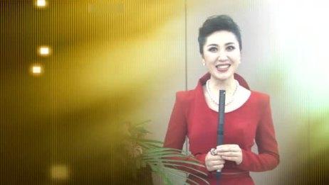 2015年康亦健十五周年庆典明星邀约