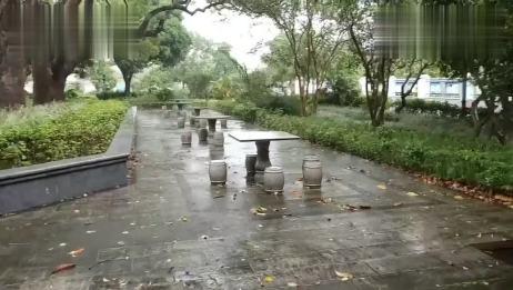一个人看雨,一个人雨中漫步,这样达到几级孤独?